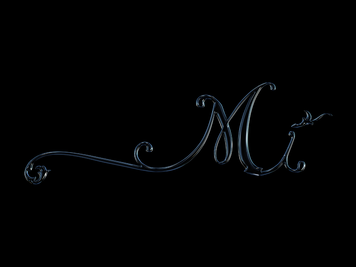 Mi Logo Glass on Black